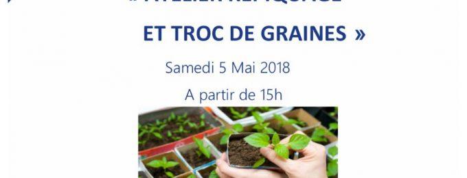 Grainotheque: Atelier repiquage et troc de graines
